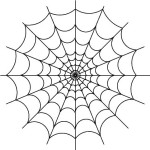 spiderweb-2